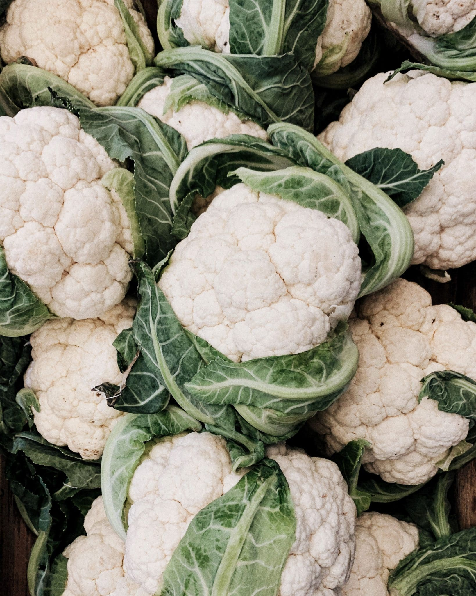 Heads of Cauliflower at Ideal You in Bend, Oregon